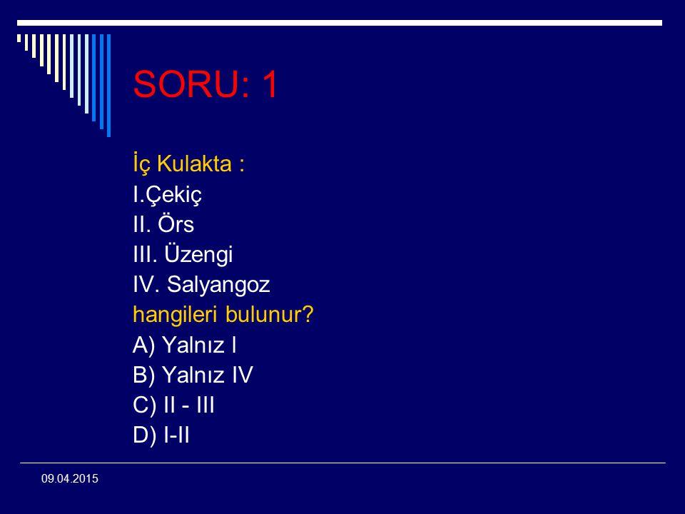 SORU: 1 İç Kulakta : I.Çekiç II. Örs III. Üzengi IV. Salyangoz