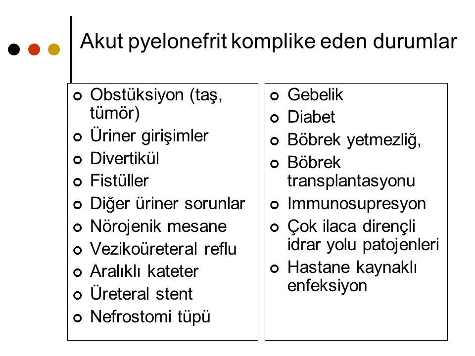 Akut pyelonefrit komplike eden durumlar
