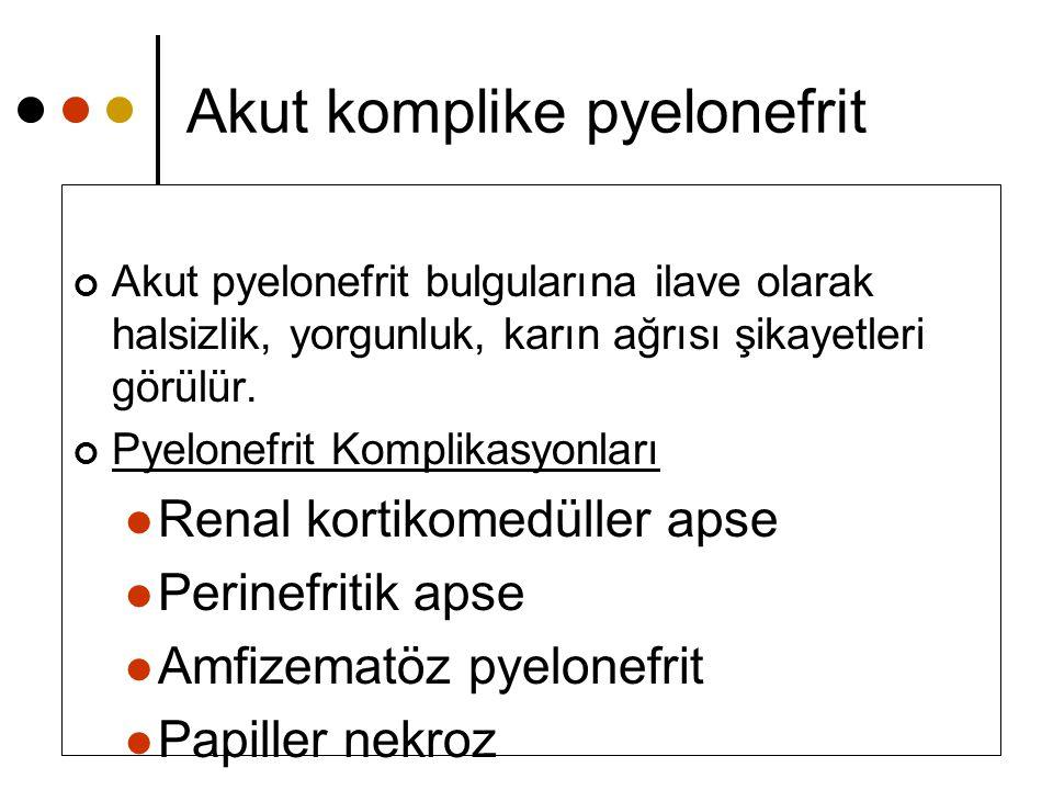 Akut komplike pyelonefrit