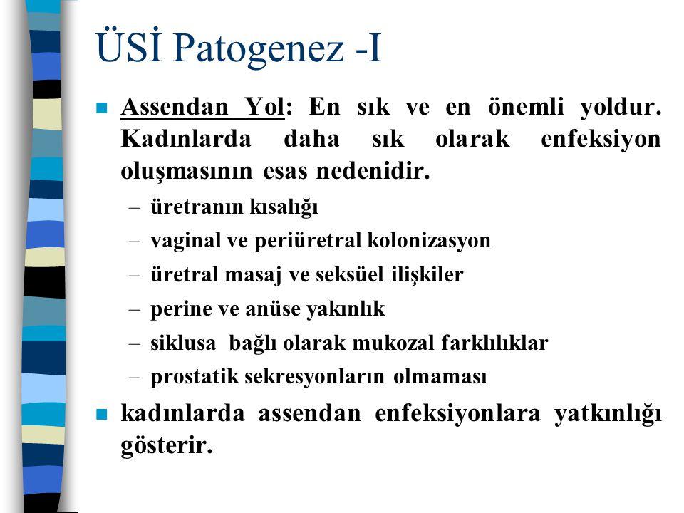 ÜSİ Patogenez -I Assendan Yol: En sık ve en önemli yoldur. Kadınlarda daha sık olarak enfeksiyon oluşmasının esas nedenidir.