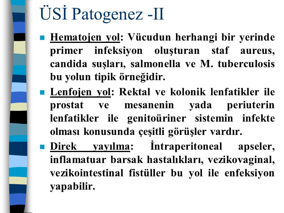 ÜSİ Patogenez -II