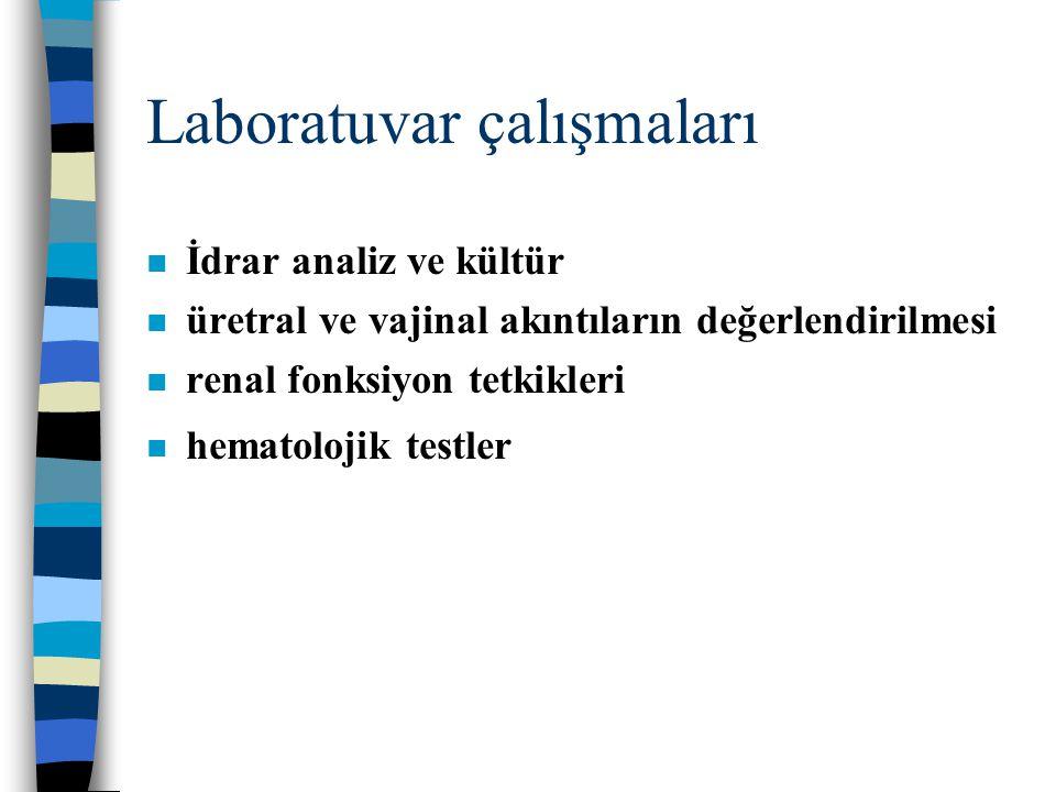 Laboratuvar çalışmaları