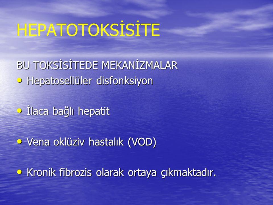 HEPATOTOKSİSİTE BU TOKSİSİTEDE MEKANİZMALAR