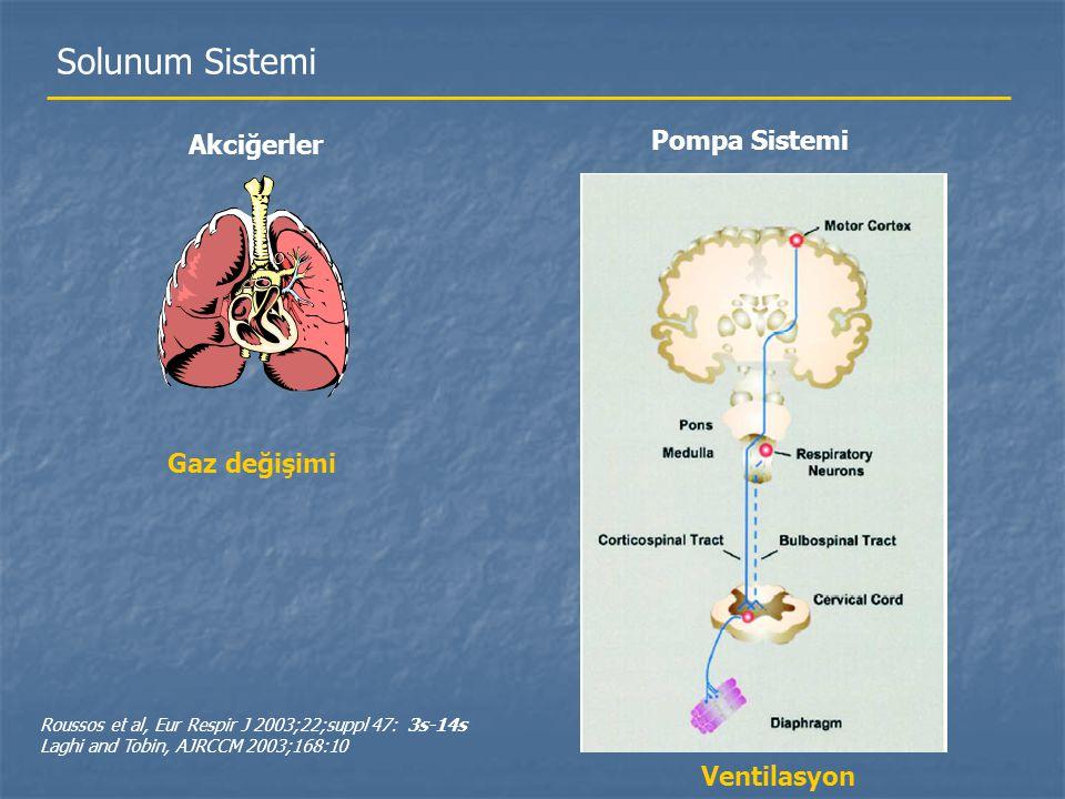 Solunum Sistemi Pompa Sistemi Akciğerler Gaz değişimi Ventilasyon