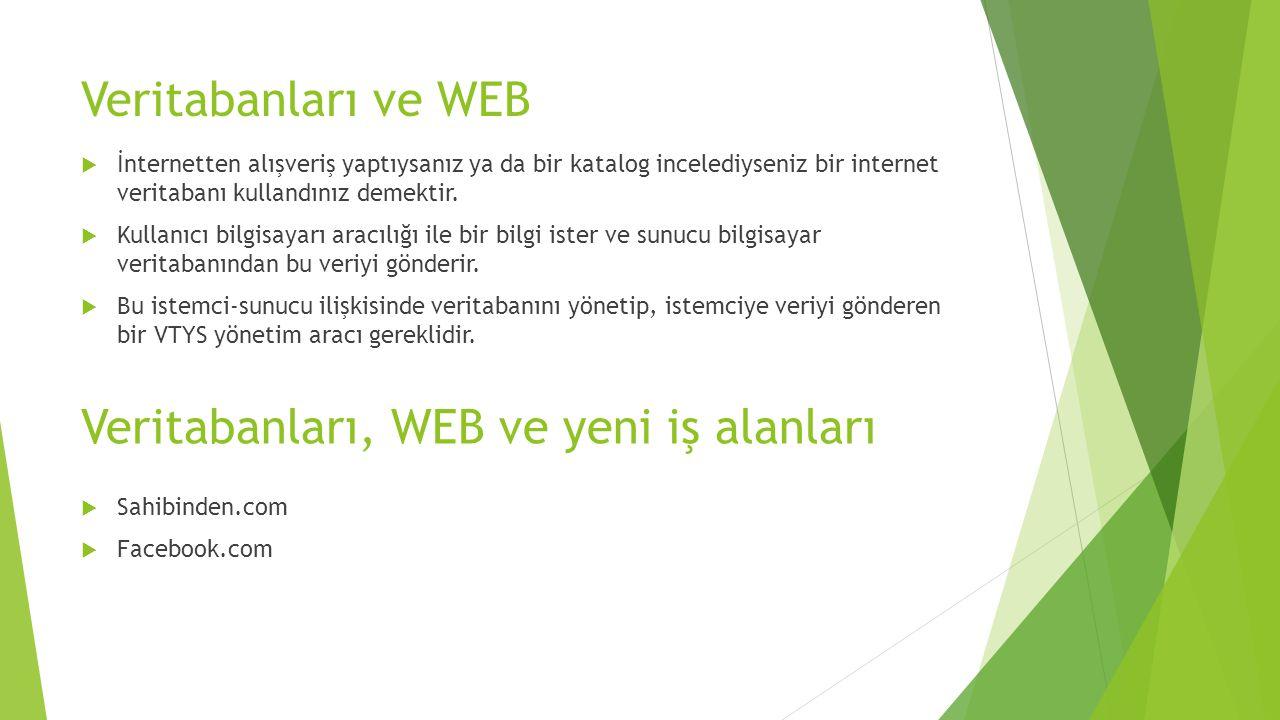 Veritabanları, WEB ve yeni iş alanları
