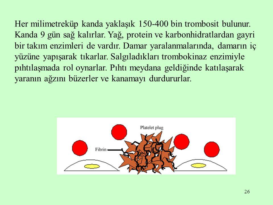 Her milimetreküp kanda yaklaşık 150-400 bin trombosit bulunur