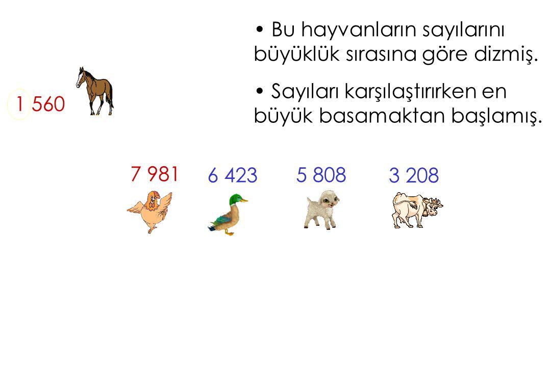 Bu hayvanların sayılarını büyüklük sırasına göre dizmiş.