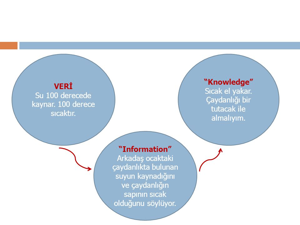 VERİ Knowledge Information
