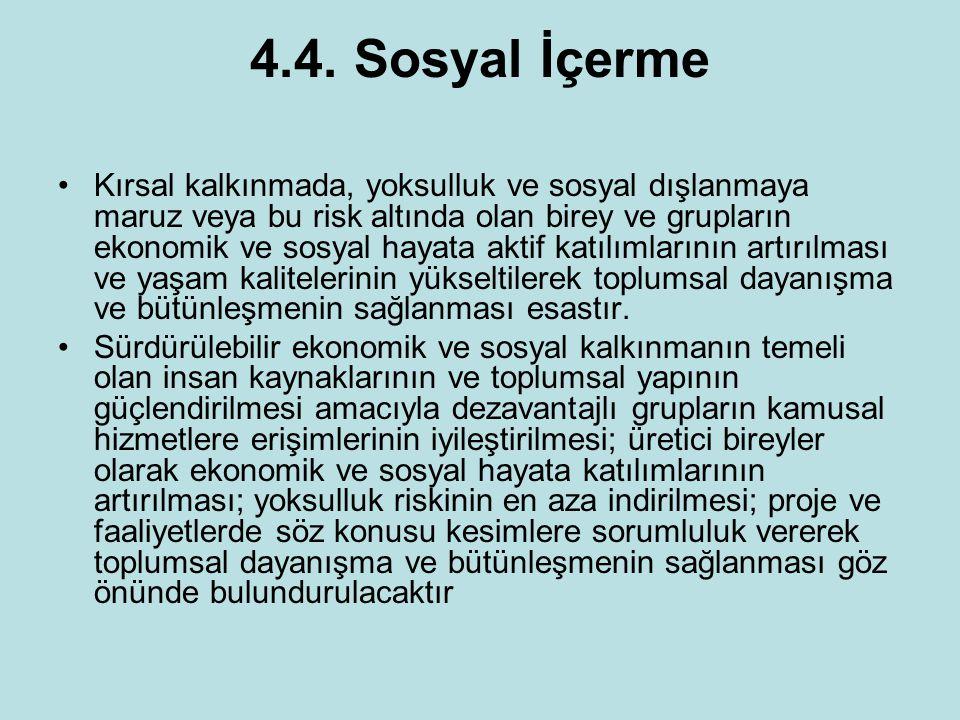 4.4. Sosyal İçerme