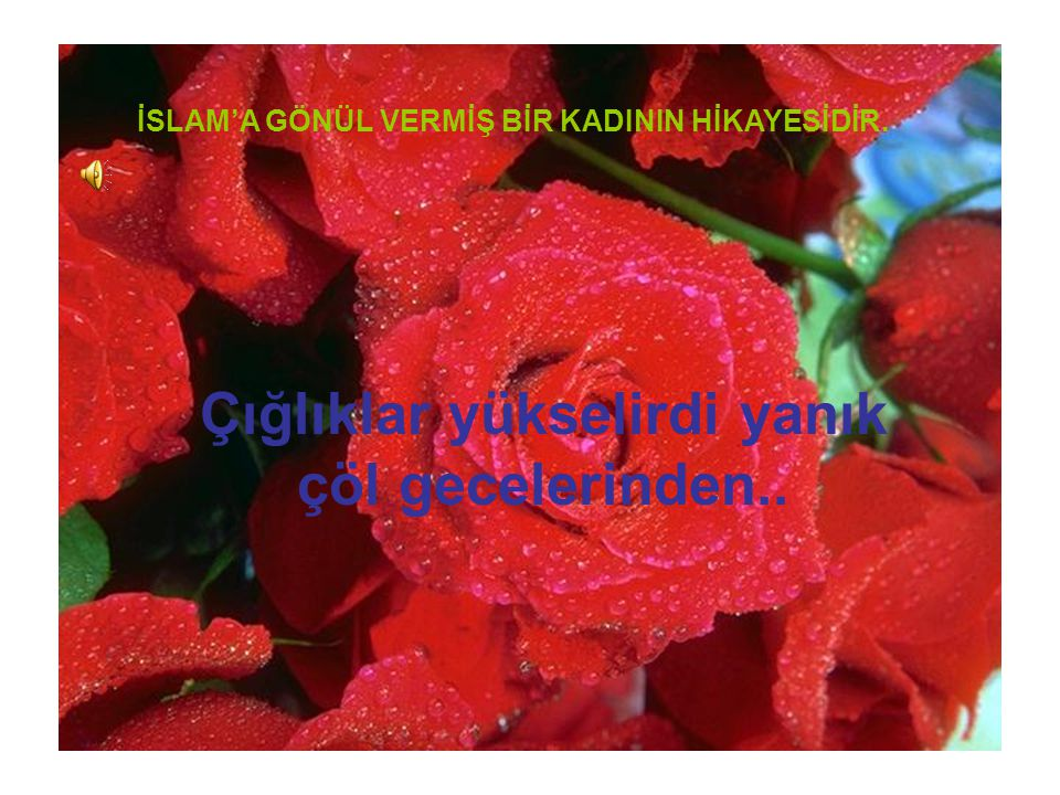İSLAM'A GÖNÜL VERMİŞ BİR KADININ HİKAYESİDİR.