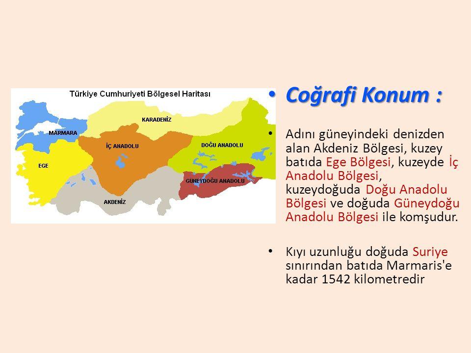 Coğrafi Konum :