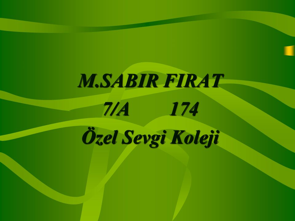 M.SABIR FIRAT 7/A 174 Özel Sevgi Koleji