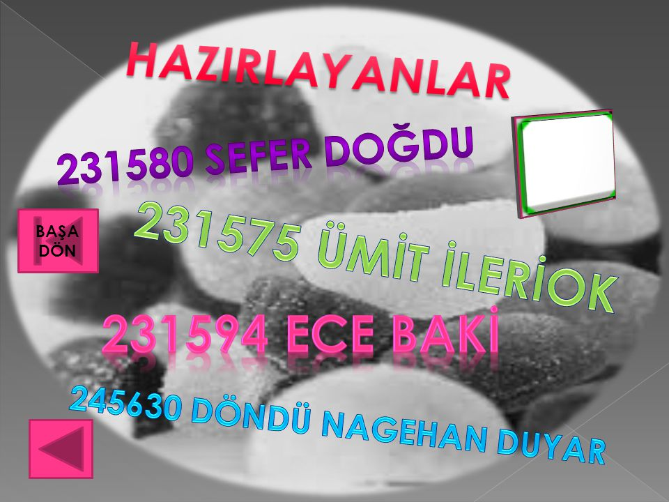 HAZIRLAYANLAR 231594 ECE BAKİ
