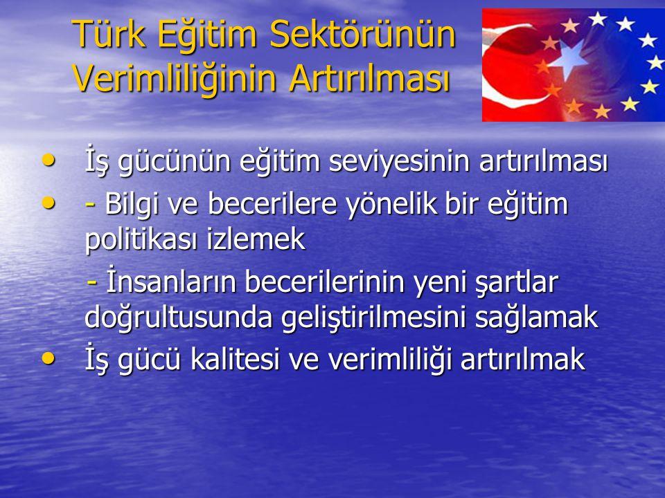 Türk Eğitim Sektörünün Verimliliğinin Artırılması