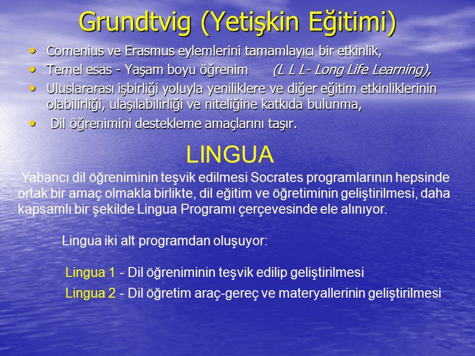 Grundtvig (Yetişkin Eğitimi)
