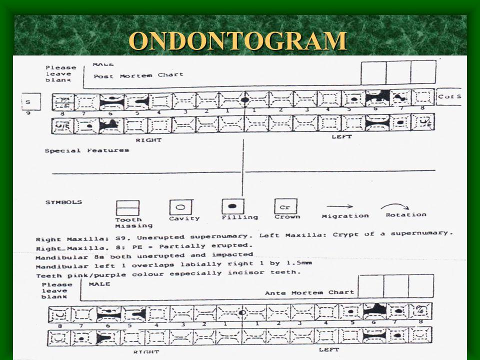 ONDONTOGRAM