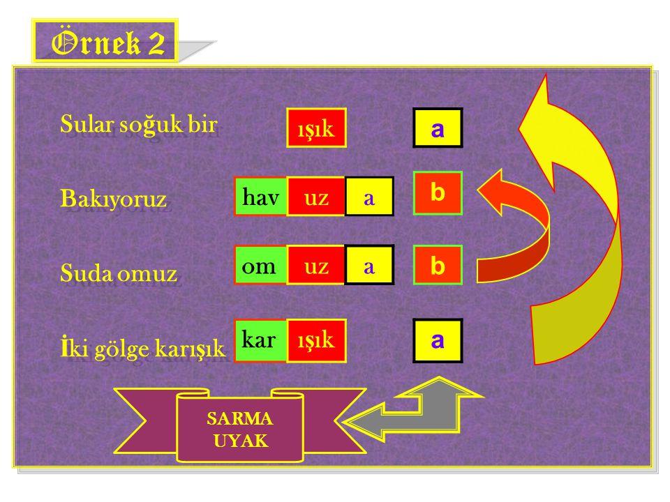 Örnek 2 Sular soğuk bir Bakıyoruz Suda omuz İki gölge karışık ışık a b