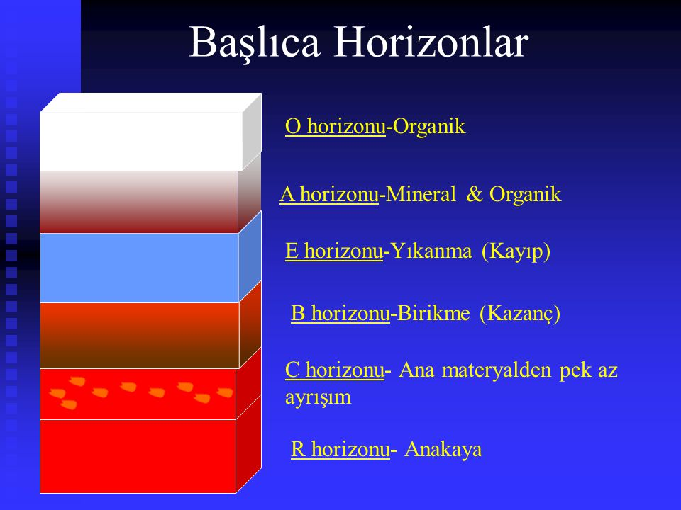 Başlıca Horizonlar O horizonu-Organik A horizonu-Mineral & Organik
