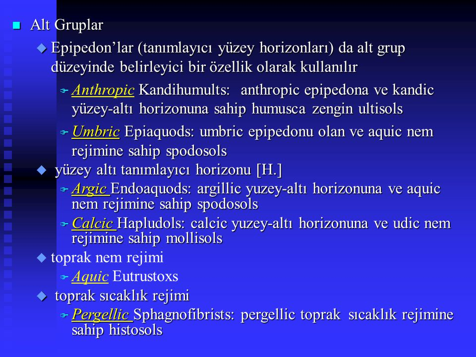 Alt Gruplar Epipedon'lar (tanımlayıcı yüzey horizonları) da alt grup düzeyinde belirleyici bir özellik olarak kullanılır.