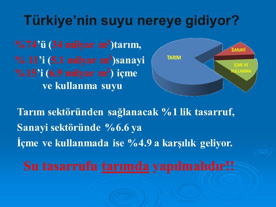 Türkiye'nin suyu nereye gidiyor