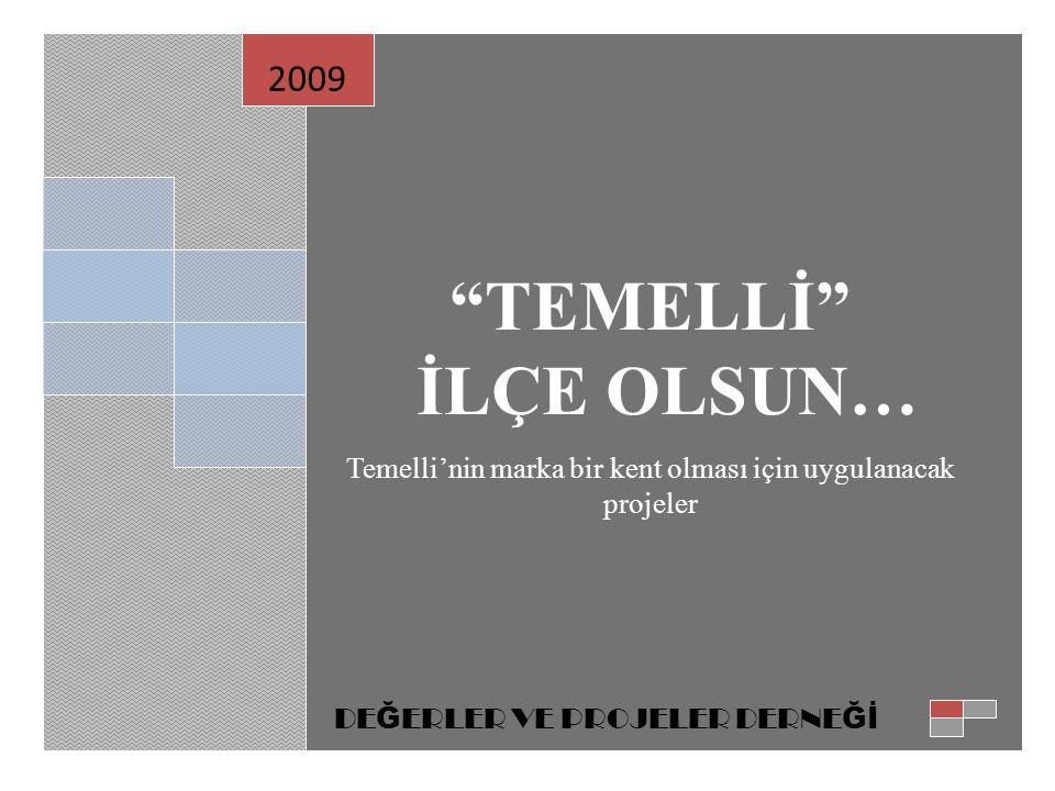 TEMELLİ İLÇE OLSUN… Temelli'nin marka bir kent olması için uygulanacak projeler.