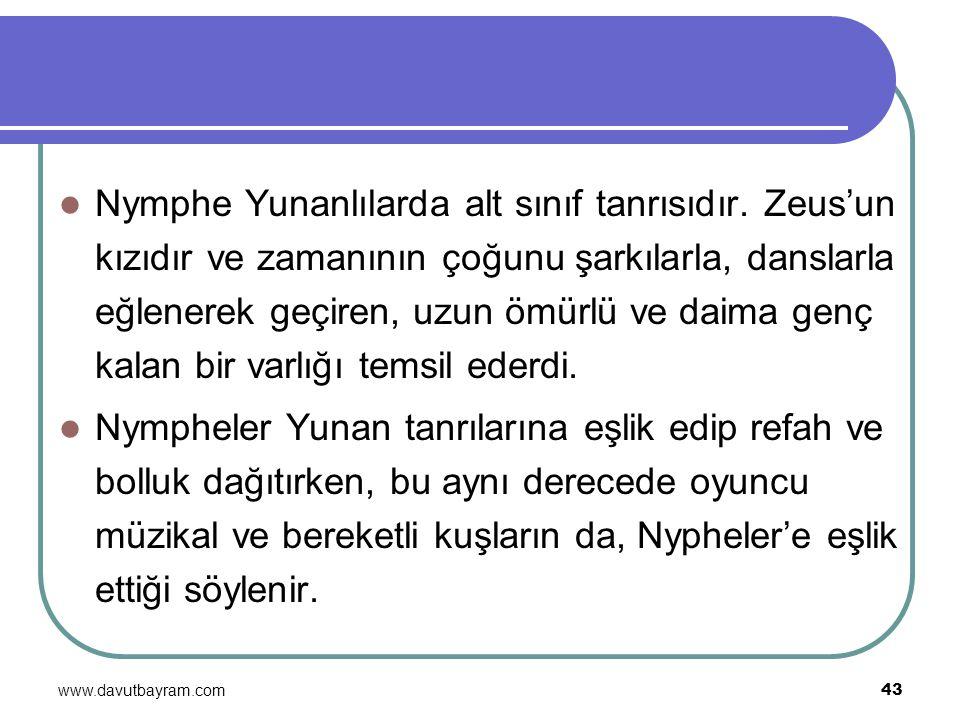 Nymphe Yunanlılarda alt sınıf tanrısıdır