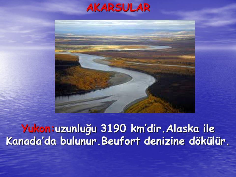 AKARSULAR Yukon:uzunluğu 3190 km'dir.Alaska ile Kanada'da bulunur.Beufort denizine dökülür.
