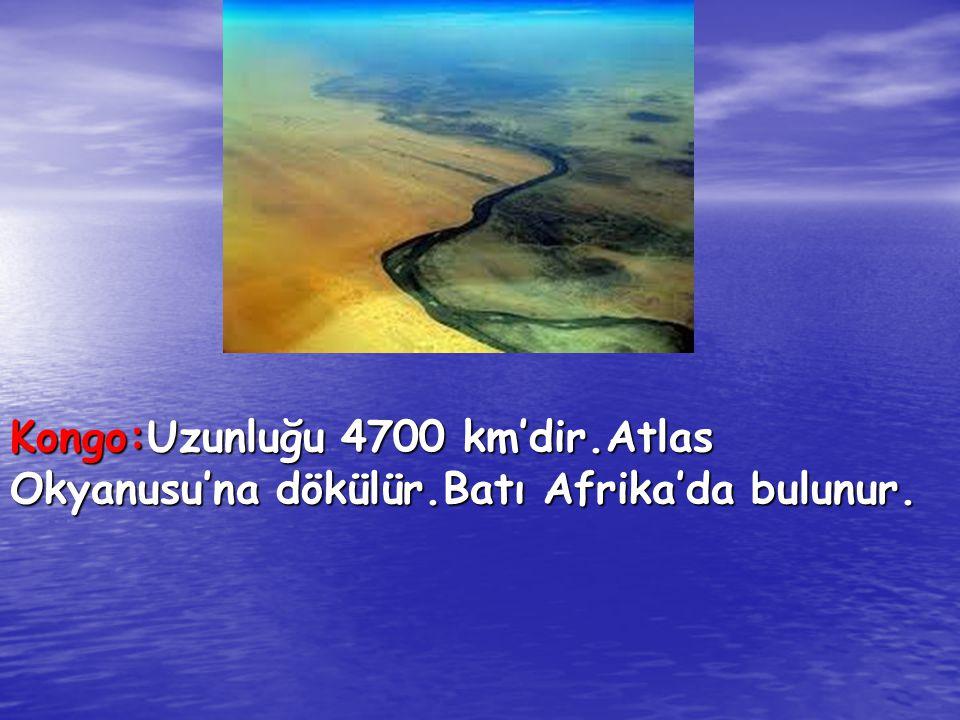 Kongo:Uzunluğu 4700 km'dir. Atlas Okyanusu'na dökülür
