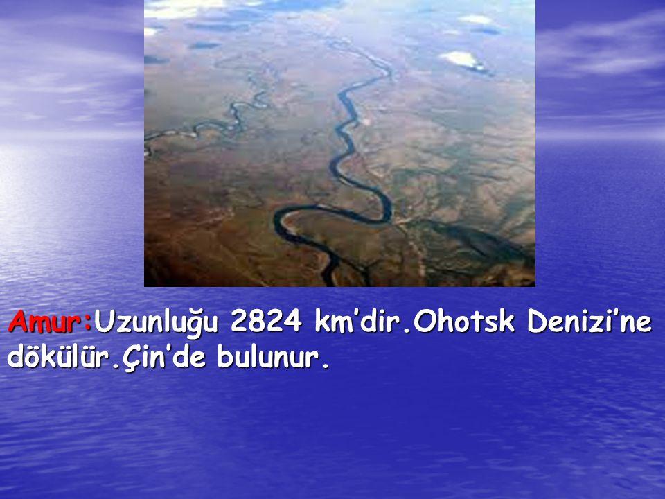 Amur:Uzunluğu 2824 km'dir.Ohotsk Denizi'ne dökülür.Çin'de bulunur.