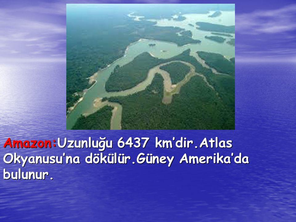 Amazon:Uzunluğu 6437 km'dir. Atlas Okyanusu'na dökülür