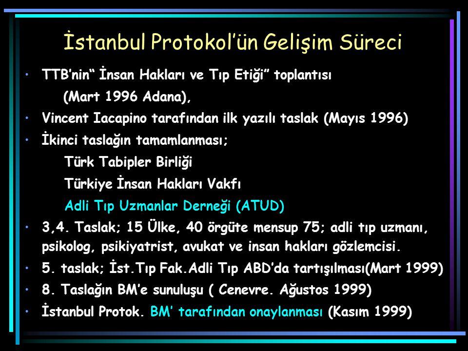 İstanbul Protokol'ün Gelişim Süreci
