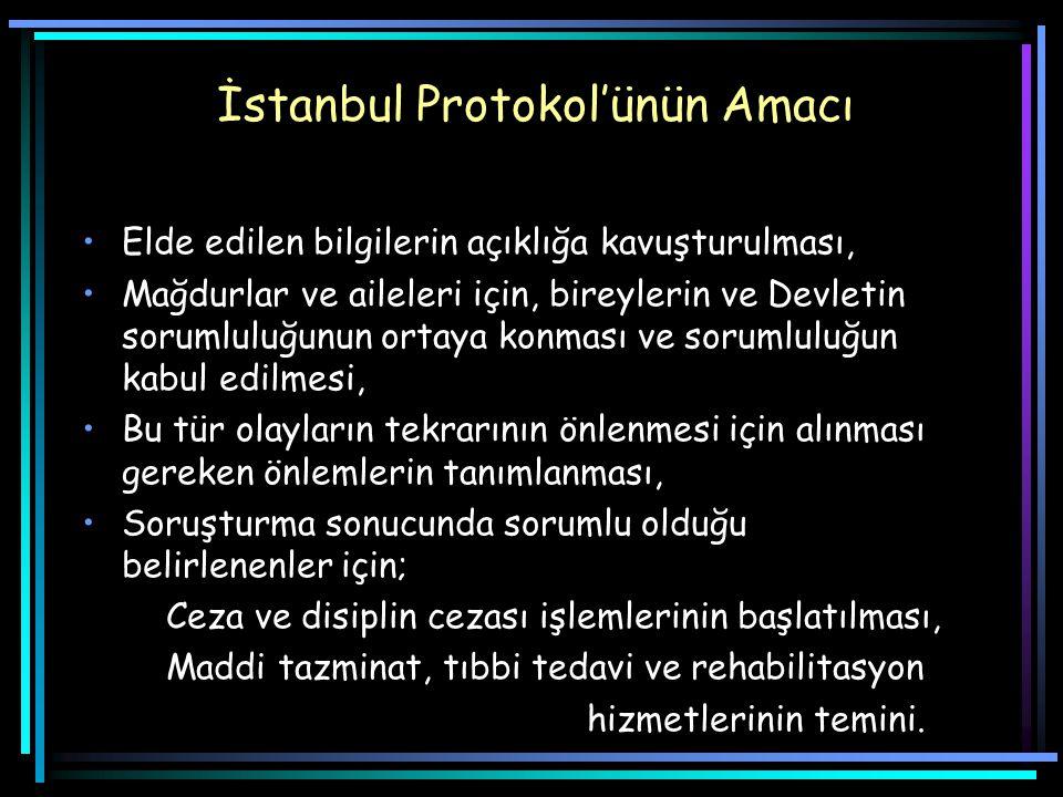 İstanbul Protokol'ünün Amacı