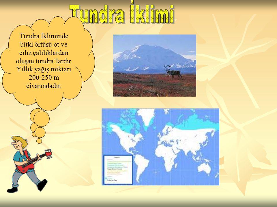 Tundra İklimi Tundra İkliminde bitki örtüsü ot ve cılız çalılıklardan oluşan tundra'lardır. Yıllık yağış miktarı 200-250 m civarındadır.