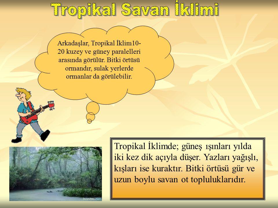 Tropikal Savan İklimi