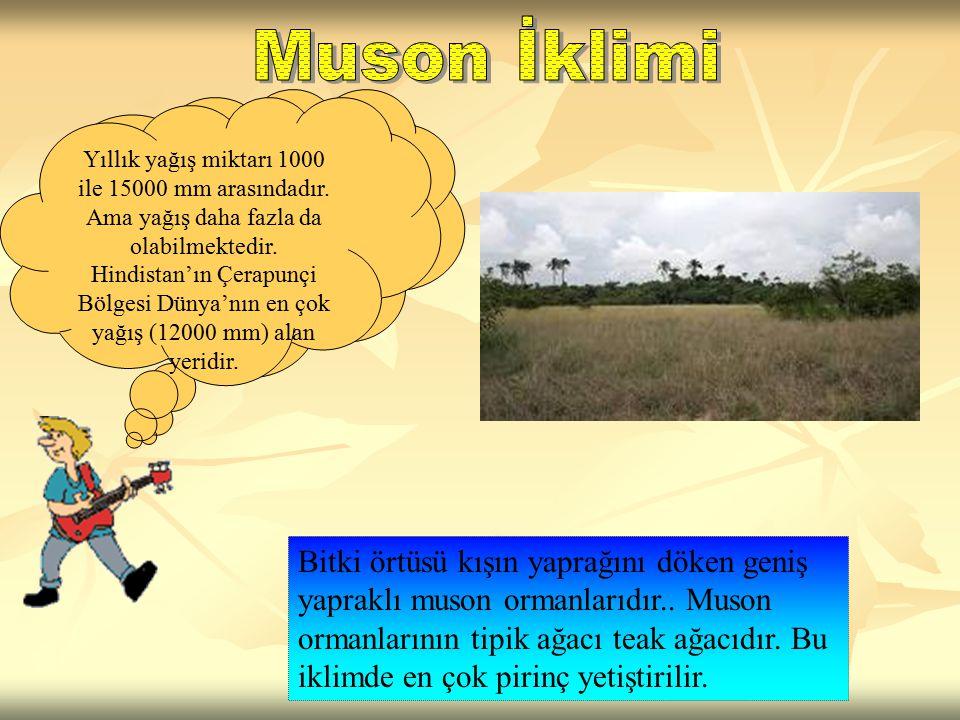 Muson iklimi; Güney, G. Doğu ve Doğu Asya'da etkili bir iklimdir.