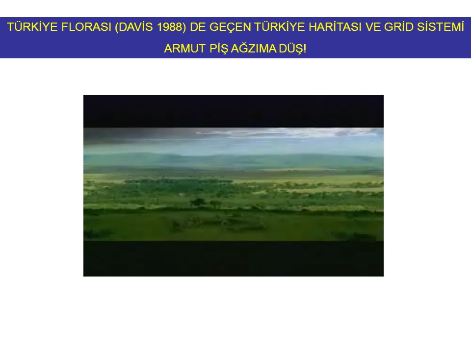 TÜRKİYE FLORASI (DAVİS 1988) DE GEÇEN TÜRKİYE HARİTASI VE GRİD SİSTEMİ