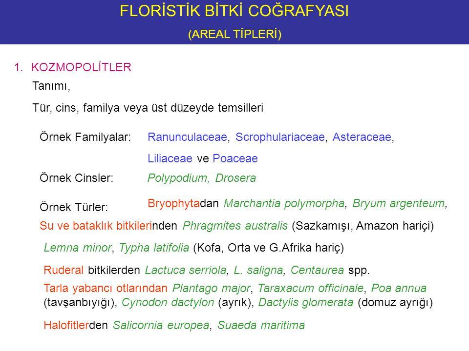 FLORİSTİK BİTKİ COĞRAFYASI