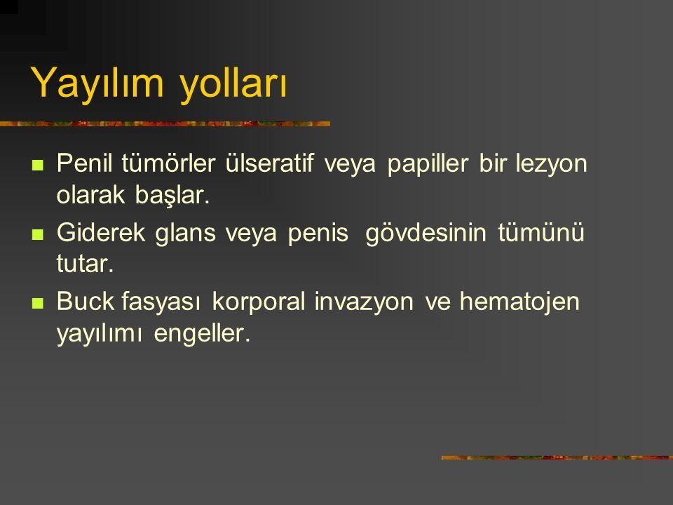 Yayılım yolları Penil tümörler ülseratif veya papiller bir lezyon olarak başlar. Giderek glans veya penis gövdesinin tümünü tutar.