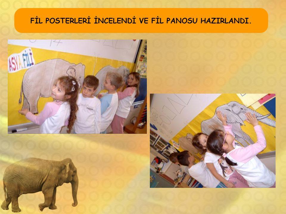FİL POSTERLERİ İNCELENDİ VE FİL PANOSU HAZIRLANDI.