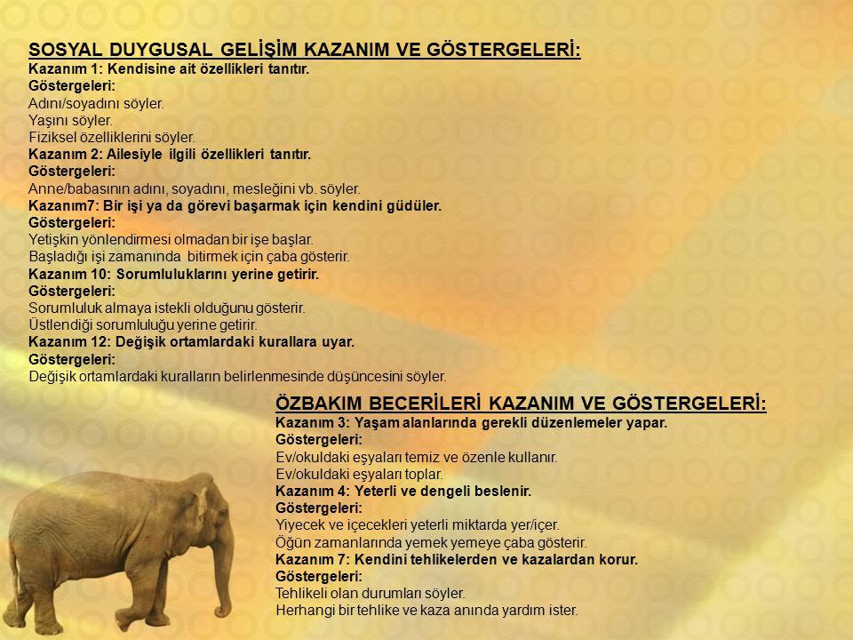 SOSYAL DUYGUSAL GELİŞİM KAZANIM VE GÖSTERGELERİ: