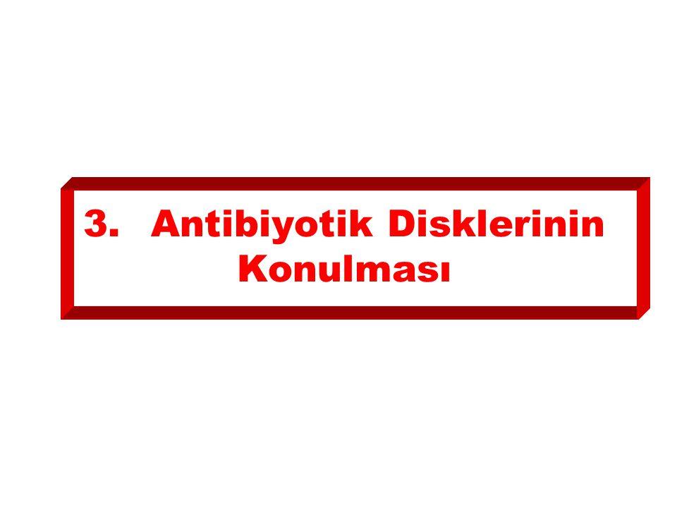 3. Antibiyotik Disklerinin Konulması