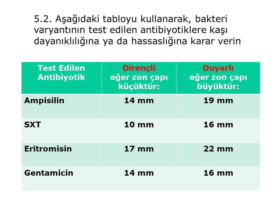 5.2. Aşağıdaki tabloyu kullanarak, bakteri varyantının test edilen antibiyotiklere kaşı dayanıklılığına ya da hassaslığına karar verin
