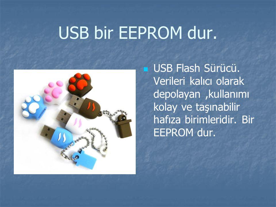 USB bir EEPROM dur. USB Flash Sürücü.