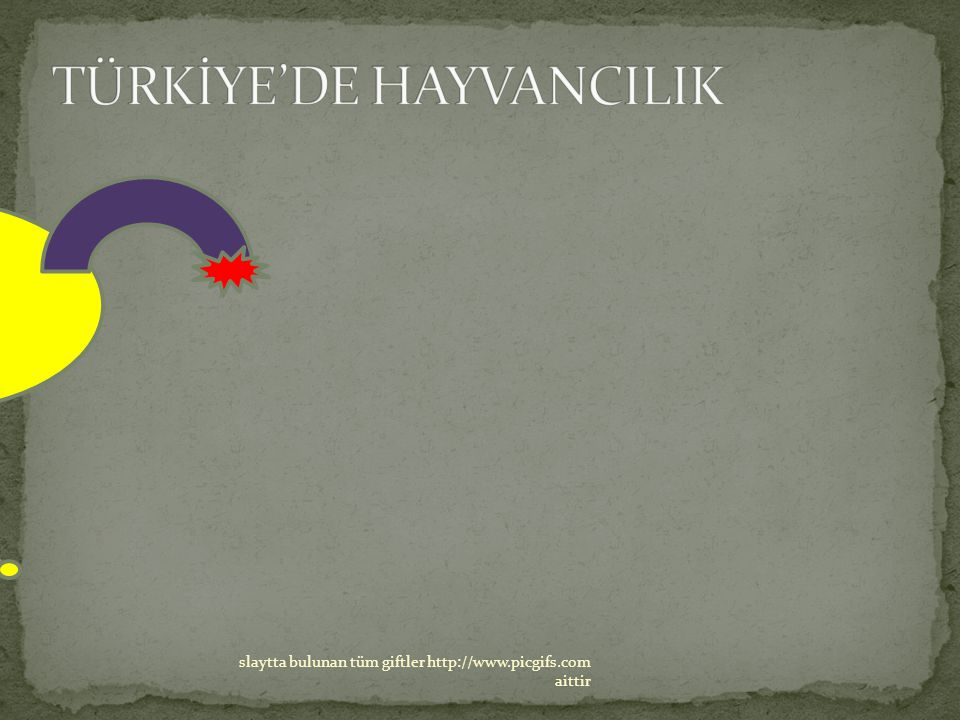 TÜRKİYE'DE HAYVANCILIK