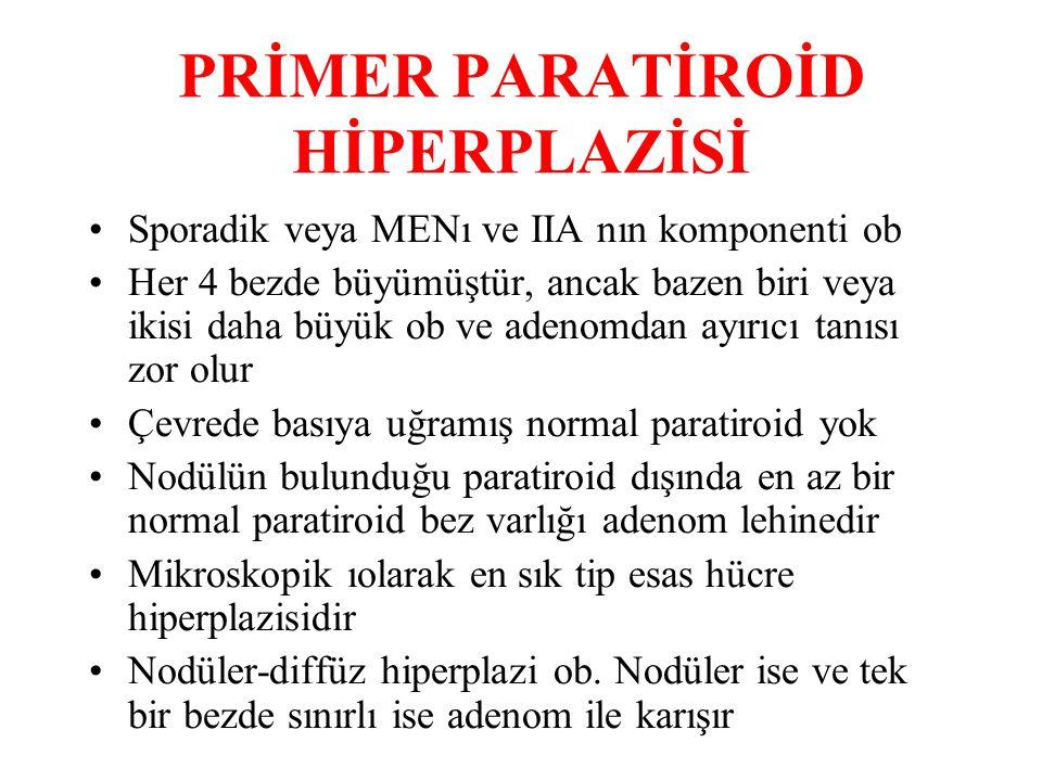 PRİMER PARATİROİD HİPERPLAZİSİ