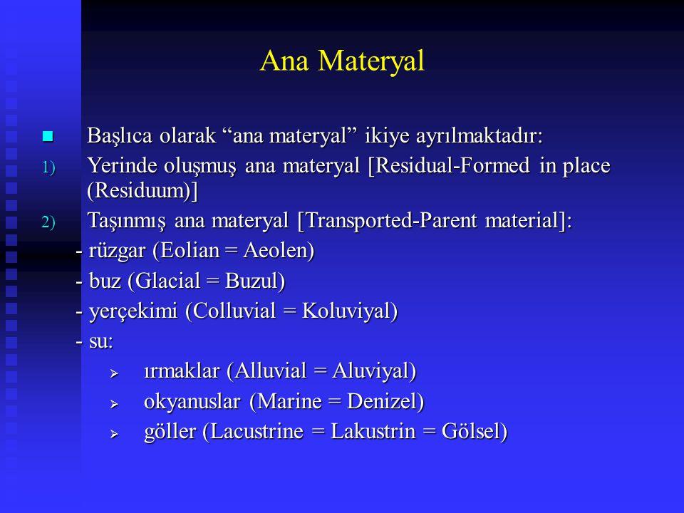 Ana Materyal Başlıca olarak ana materyal ikiye ayrılmaktadır:
