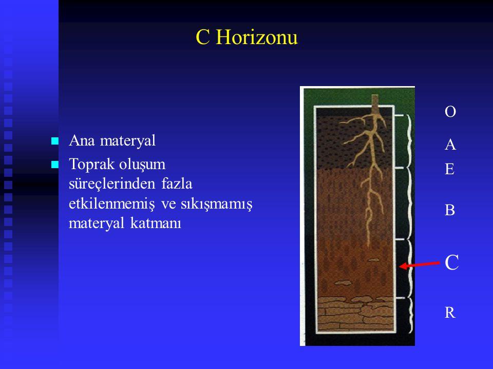 C Horizonu C O Ana materyal A