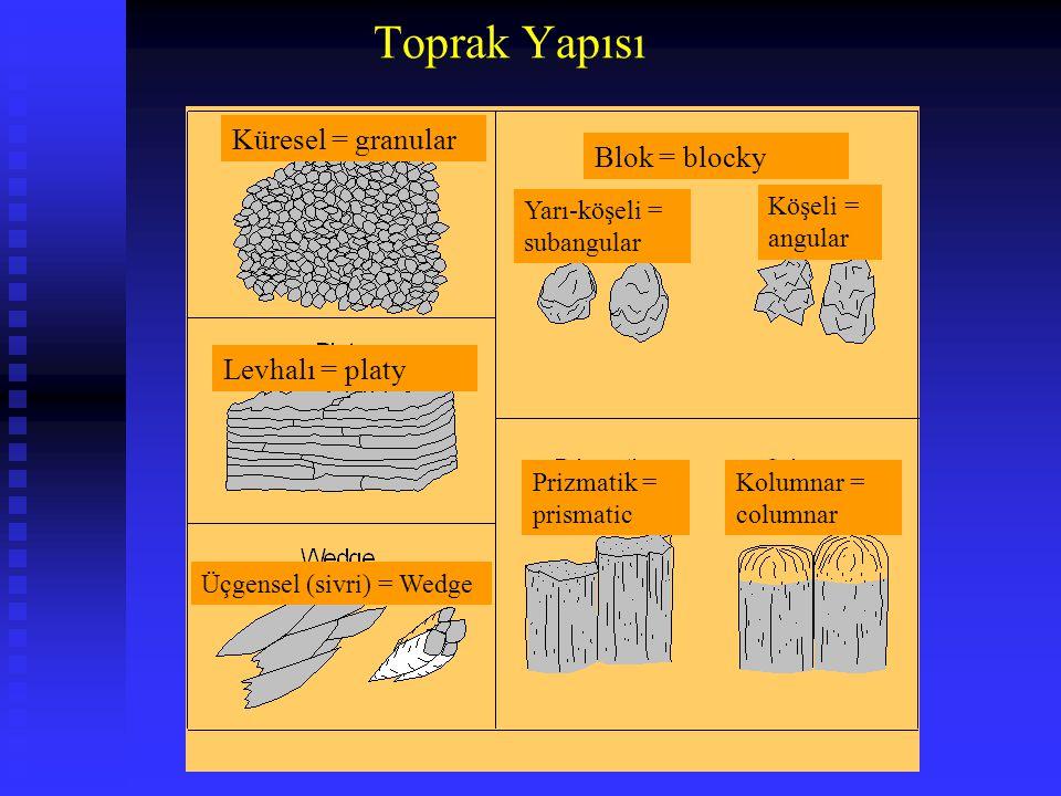 Toprak Yapısı Küresel = granular Blok = blocky Levhalı = platy