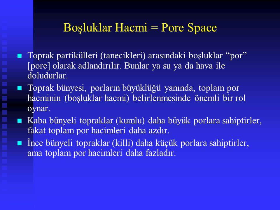Boşluklar Hacmi = Pore Space