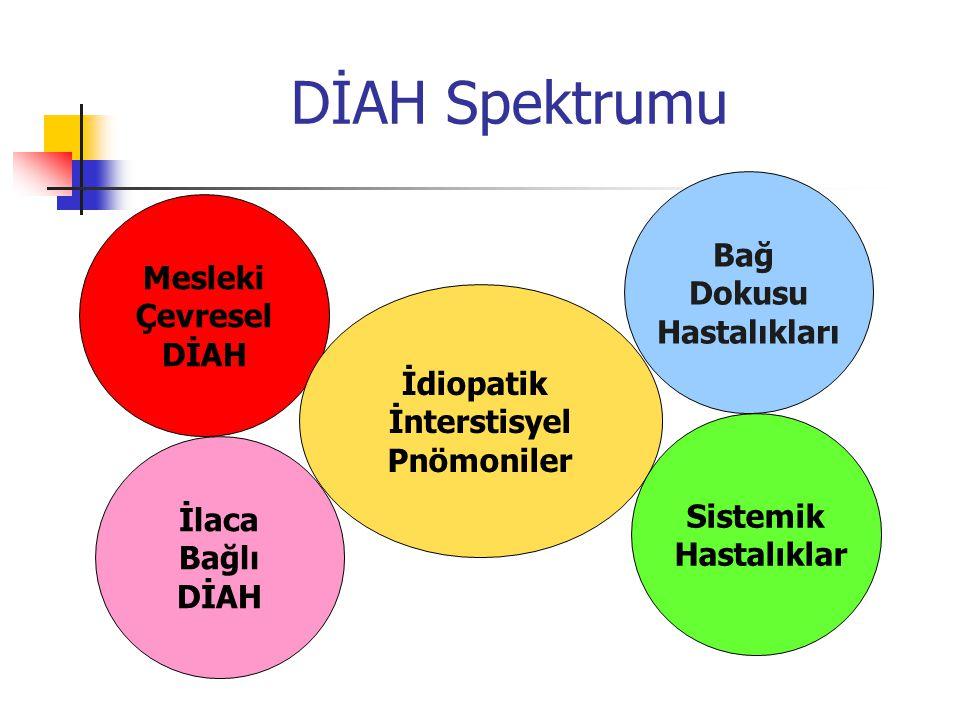 DİAH Spektrumu Bağ Dokusu Mesleki Hastalıkları Çevresel DİAH İdiopatik